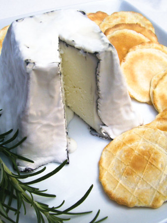 Ellington goat cheese  from Looking Glass Creamery