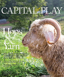 Capital at Play Aug 2014 Cover